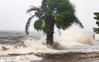Market Struck by Hurricane This Week!